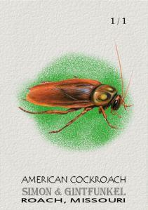 2013 Gintfunkel American Cockroach
