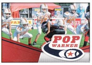 2014 Panini NFL Stickers_0002