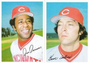 1981 Topps Reds 5x7 Driessen Collins